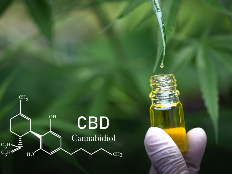 CBD Oil Extracted