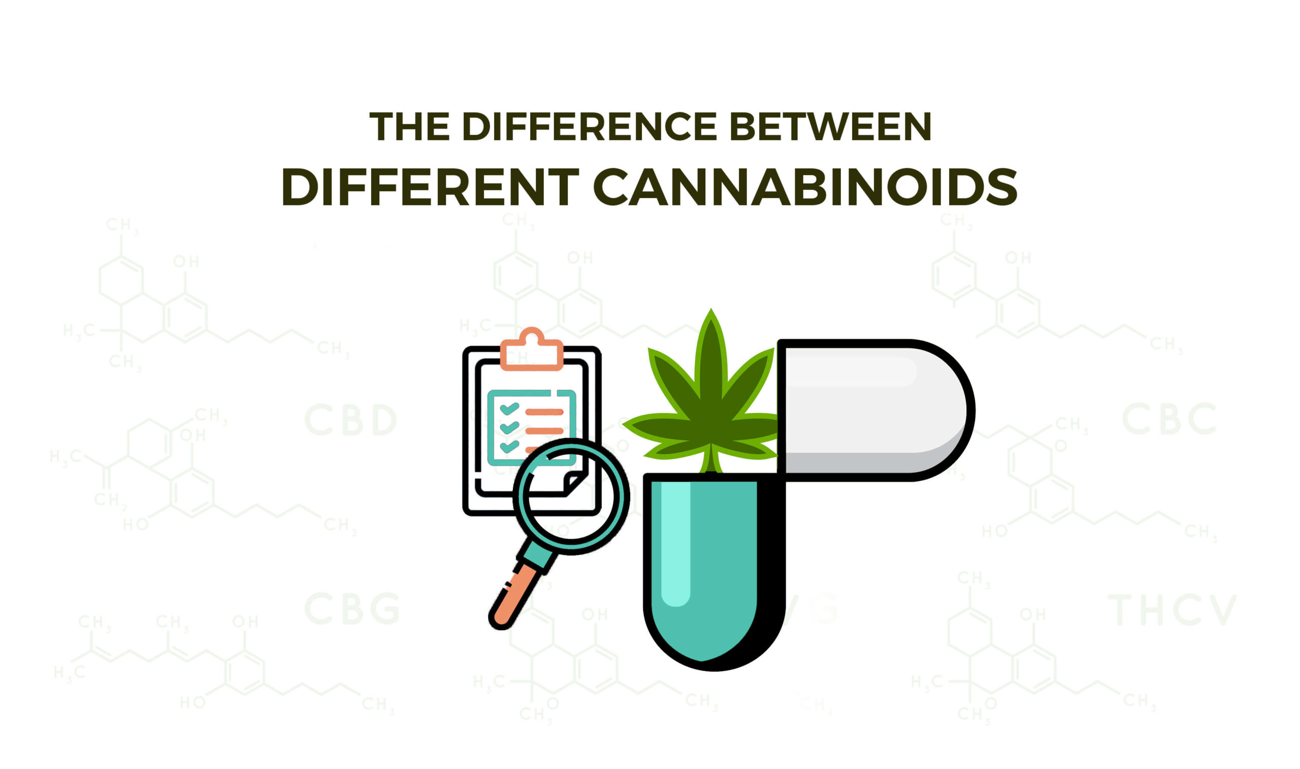The Difference Between Different Cannabinoids