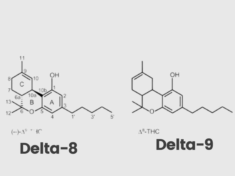Delta-8 THC vs delta 9