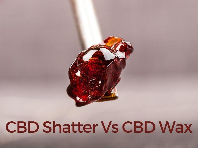 CBD Shatter Vs CBD Wax